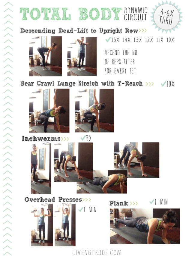 Total Body Dynamic Circuit