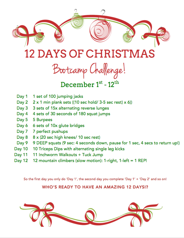 12 days of christmas bootcamp challenge!